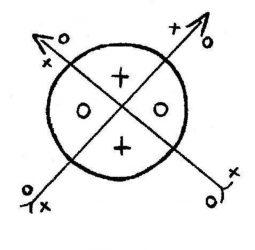 firmas de 7 rayos